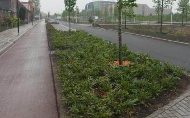 Parallelweg Winterswijk