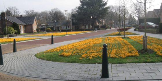 Reconstructie branderbosch